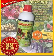 HORMONIK B