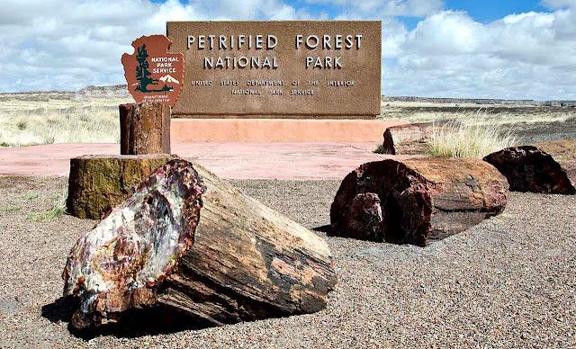 Parque Nacional da Floresta Petrificada