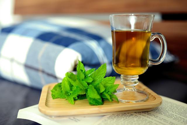 Meduňka čaj