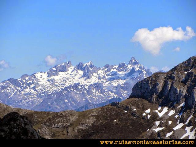 Ruta al Campigüeños y Carasca: Desde la Carasca, vista del Macizo Occidental de Picos de Europa