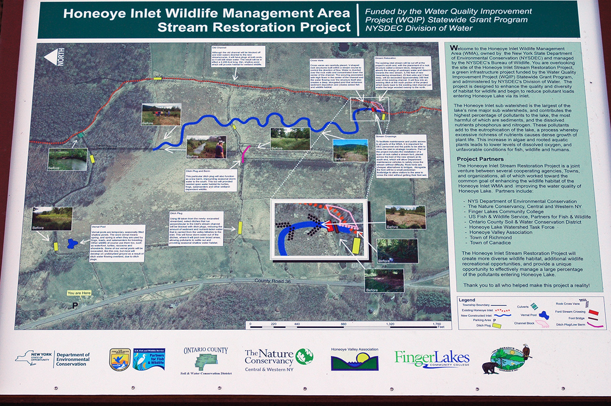 a sign on the site details the honeoye inlet wildlife management area stream restoration project below the new meandering inlet stream
