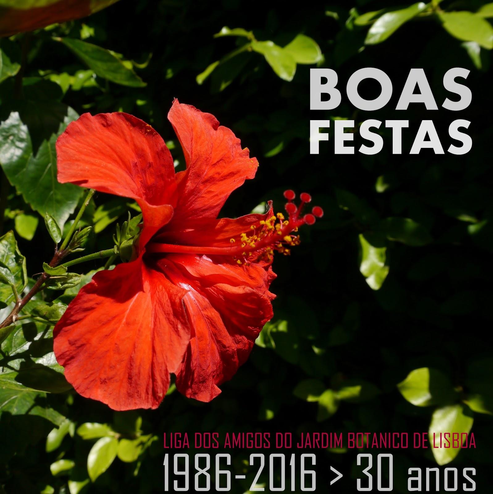 festa do outono jardim botânico:Amigos do Botânico: BOAS FESTAS dos Amigos do Jardim Botânico