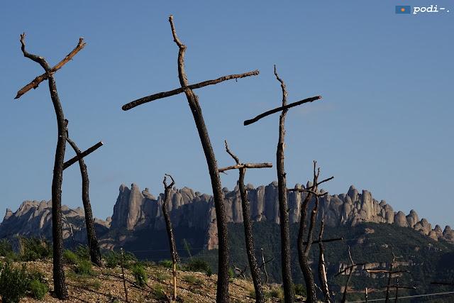 Il bosco delle croci - el bosque de las cruces
