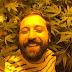 Feliz, Gregório Duvivier comemora 'colheitas espetaculares' de maconha
