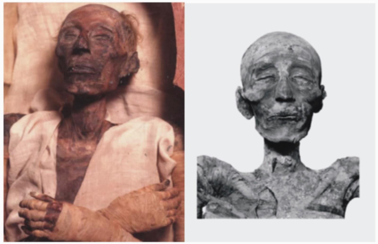 Ramses ii mummy gia - 3 10