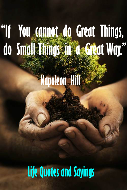 Life Quotes And Sayings: If You Cannot Do Great Things Do