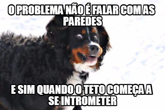 Intrometer