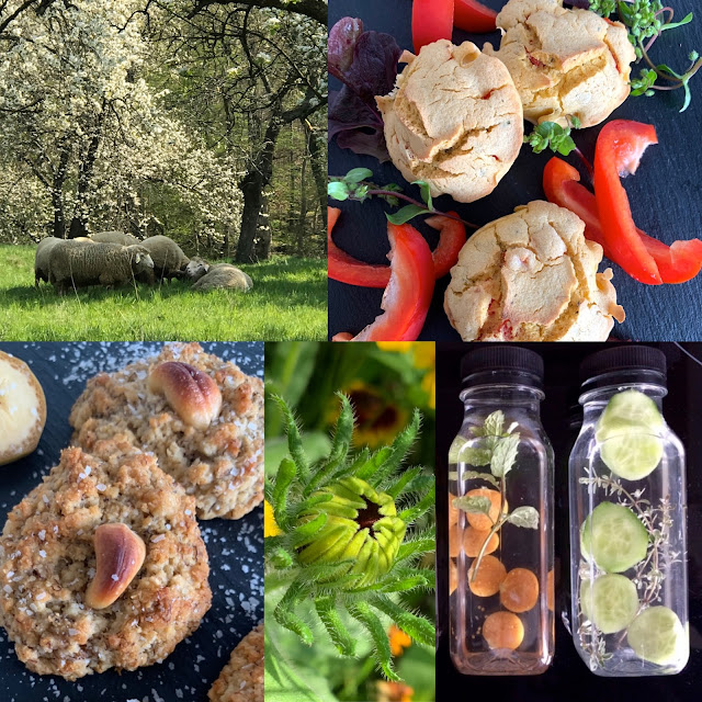 Muffins, Kekse, glutenfrei, vegan, Rezept, Backrezept, ein Tag im Grünen, relax, genießen, Natur