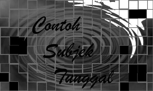 Contoh Subjek Tunggal (Singular Subject),subjek tunggal, grammar subjek, subjek bahasa Inggris
