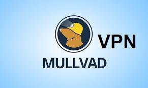 Mullvad VPN-Download