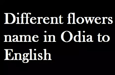 Flowers Name in Oriya | Different flowers name in Odia to English