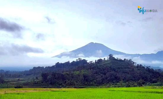 Prakiraan Cuaca Wilayah Moga & Sekitarnya Hari ini, Kamis 7 Januari 2021