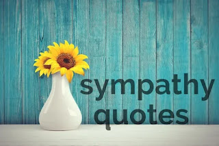 Sympathy Quotes - Chapter 5