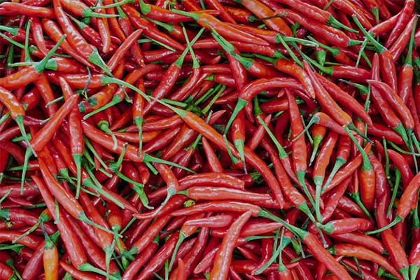 Cabai - 9 Sayuran Yang Membantu Dalam Diet Anda Untuk Membakar Lemak Perut
