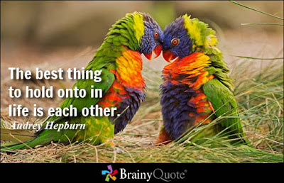 great quotes love quotes with parrot image