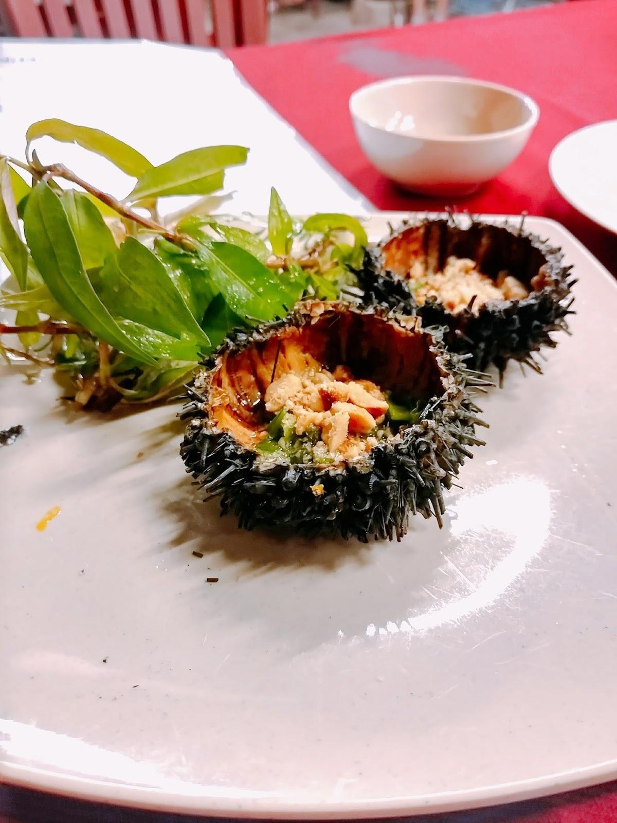 Phu Quoc Sea Urchin