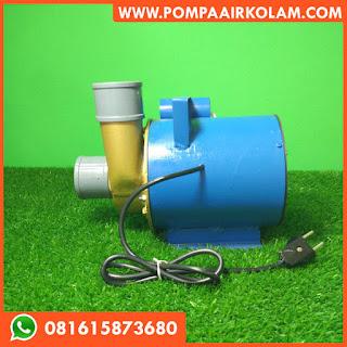 Pompa Air Kolam Lele