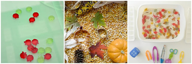 Autumn sensory boxes for kids from And Next Comes L