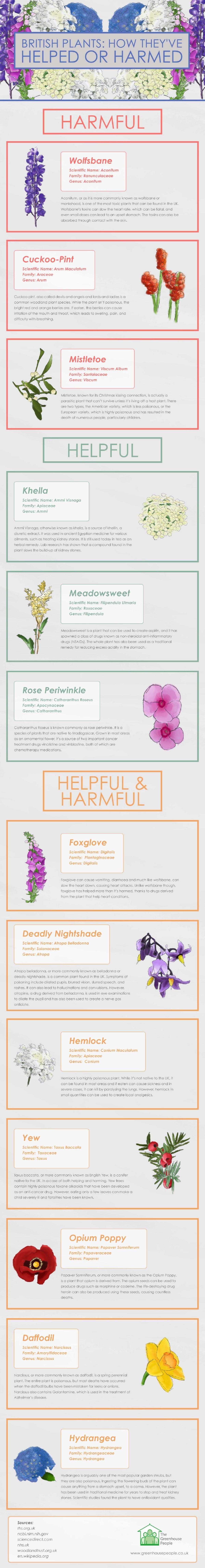 British plants #Infographic