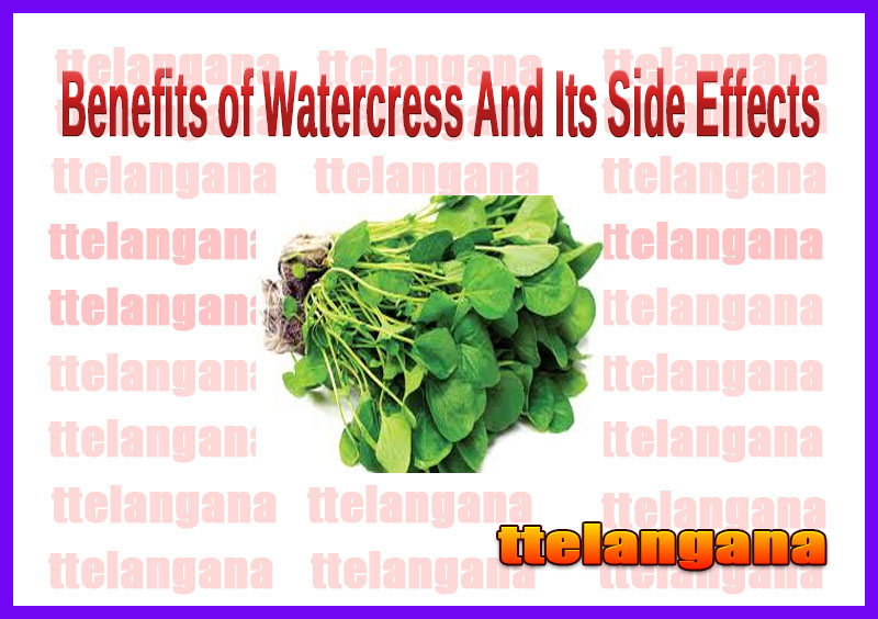 Benefits of Watercress And Its Side Effects