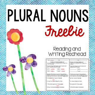 Image of cover of plural nouns freebie