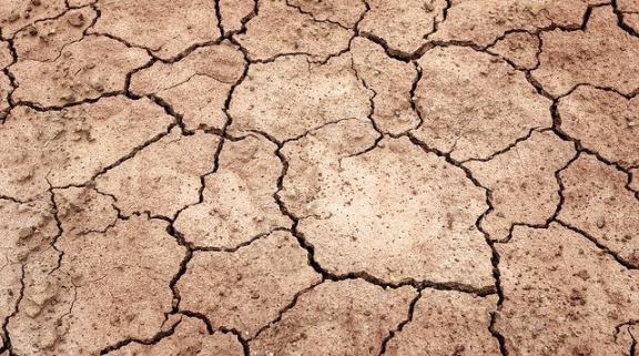 Kemarau Panjang, Krisis Air di Lotim Sudah Masuk Level Memprihatinkan