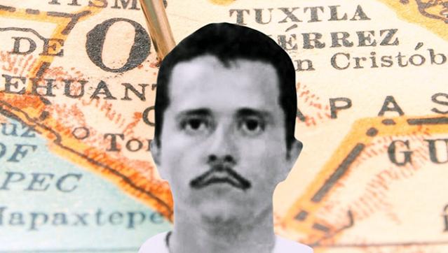 """DON MENCHO"""": EL """"AMO del TERROR del CARTEL de JALISCO y su RALEA"""