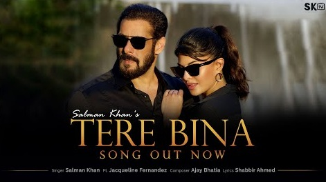 Tere Bin Lyrics - Salman Khan