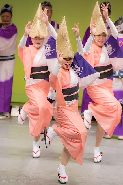 せいせき桜まつり、ヴィータホールにて阿波踊りを踊るひょっとこ連の写真