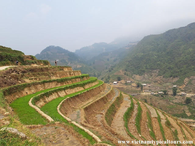 Full Tips For A Perfect Trekking in Sapa 1