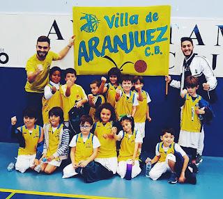 Villa de Aranjuez Babybasket