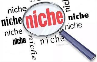 niche-sites-la-gi