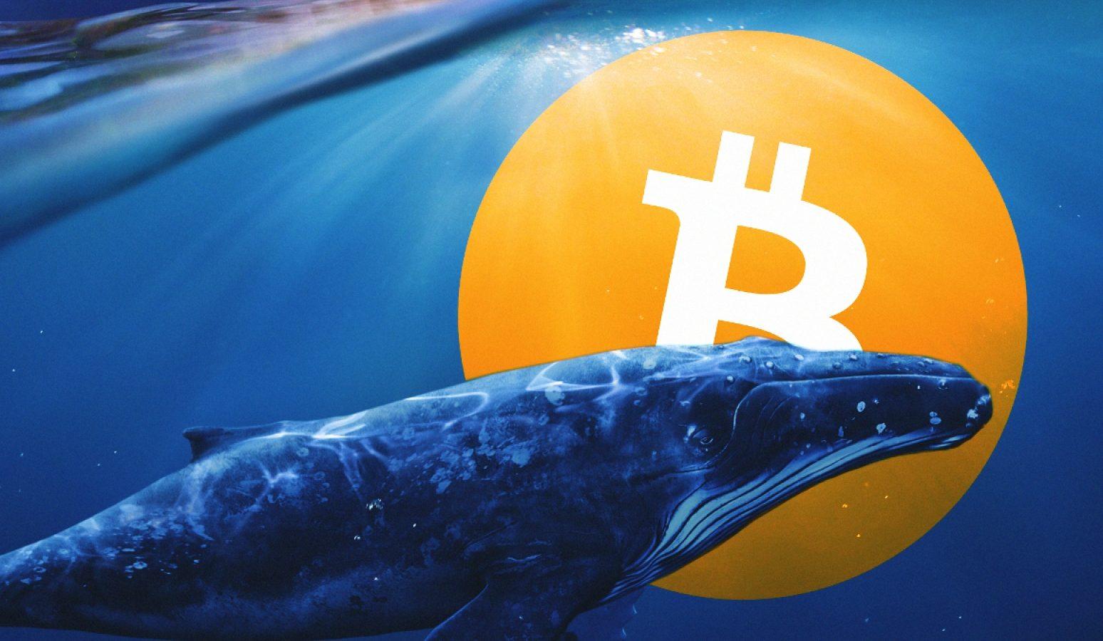 Balinalardan Bitcoin satışı gelebilir mi?