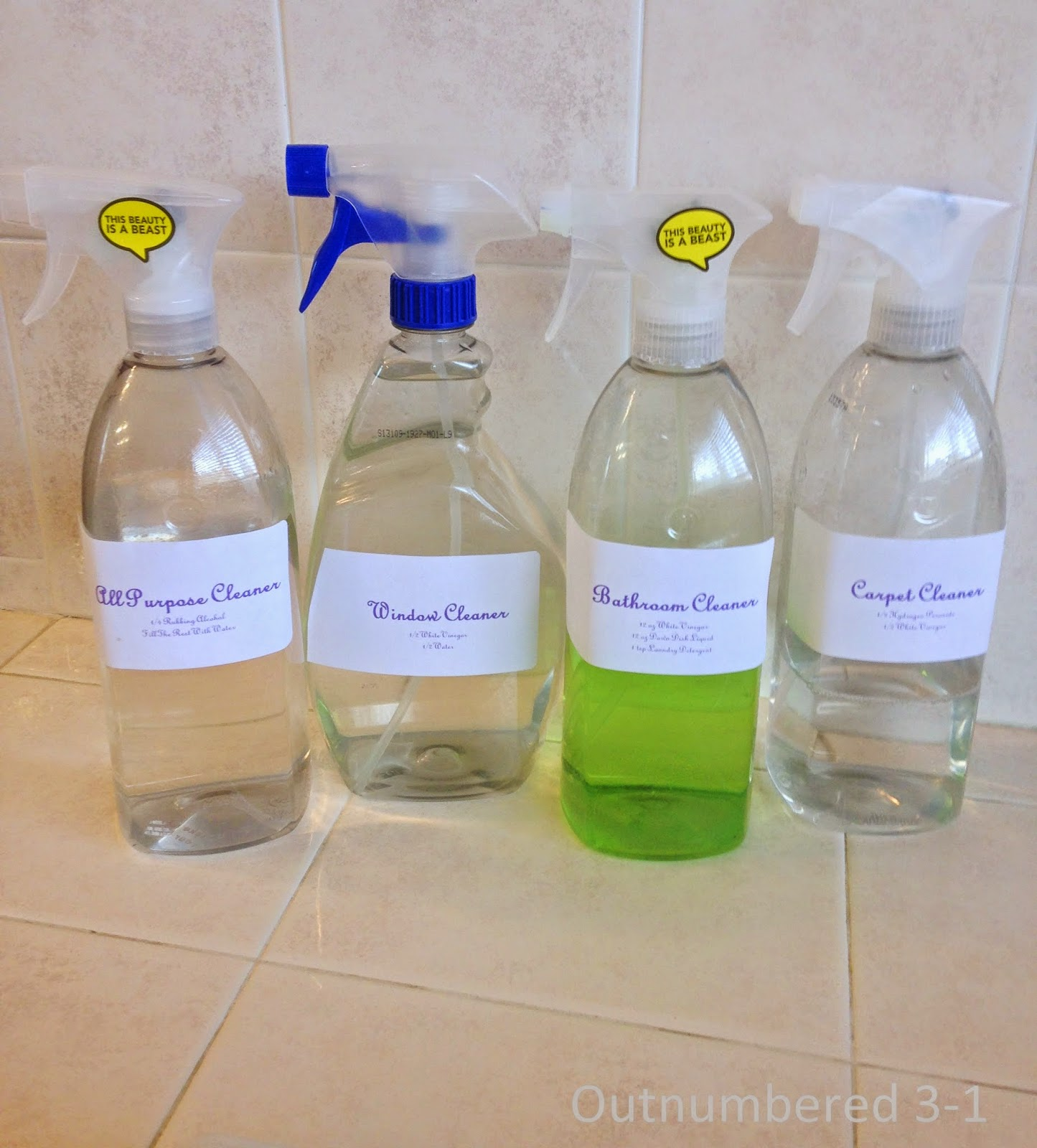 DIY, House Hold Cleaners, Bathroom Cleaner, Window Cleaner, Carpet Cleaner
