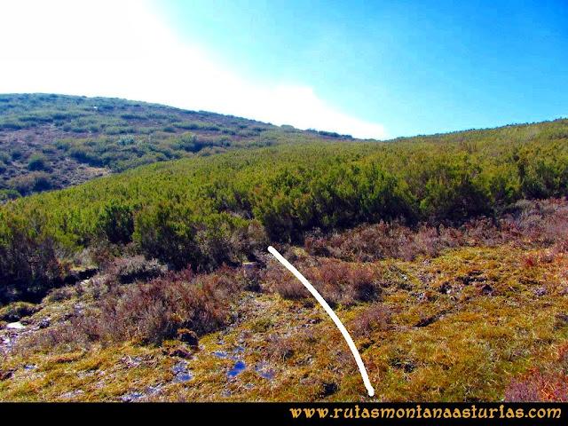 Ruta peña Manteca o Horru: Entrada al pequeño sendero que cruza la maleza