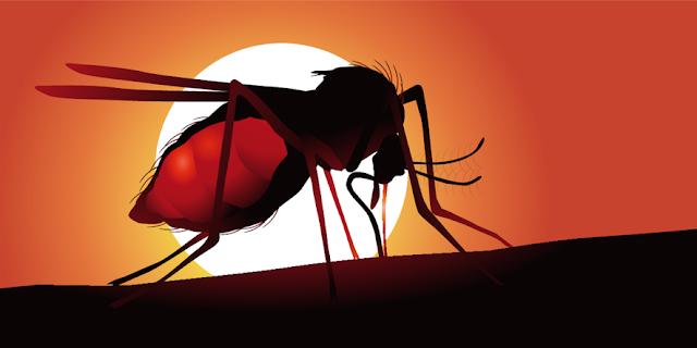 Spread of Malaria