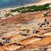 Κέρος: Το αρχαιότερο νησιωτικό ιερό στον κόσμο αποκαλύπτει κάποια από τα μυστικά του