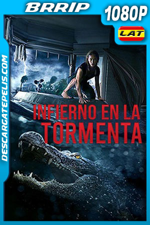 Infierno en la tormenta (2019) 1080p BRRip Latino – Ingles