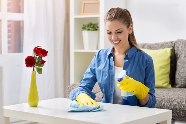 Different Types of House Cleaners