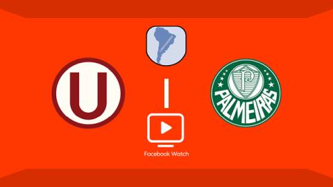 Assista ao vivo a transmissão do Facebook Watch de Universitário x Palmeiras