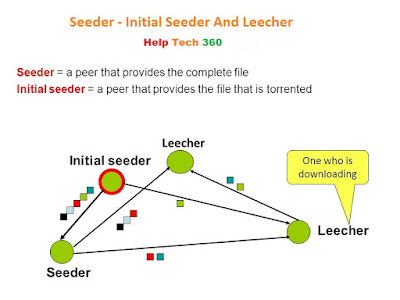 concept of seeders and leachers