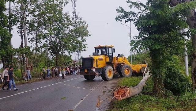 Tertimpa Pohon Saat Berkendara, Seorang Remaja Aceh Besar Tewas di Tempat