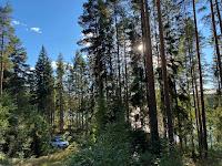 Vanlife und Wildcamping in Schweden