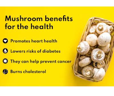 Mushroom benefits for the health