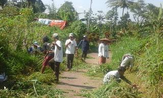 Pihak Desa berharap, kedepan, meski tidak di pimpin oleh pihak desa, masyarakat bisa terpanggil dengan sendirinya unhtuk membersihkan jalan demi kenyamanan masyarakat pengguna juga kita bersama.