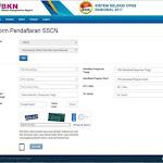 Pengisian Formulir Pendaftaran CPNS 2017 Online di sscn.bkn.go.id