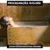 PROGRAMAÇÃO - DRAMAS - BOKU TO SHIPPO TO KAGURAZAKA - EP. 02