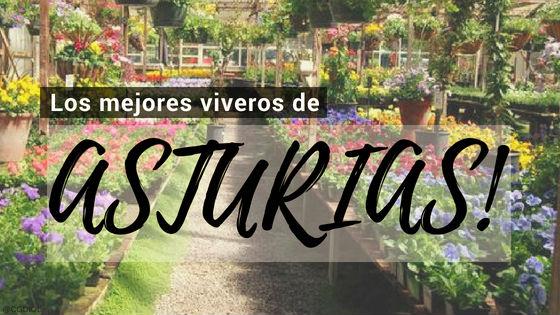 Listado de los Mejores Viveros de la Provincia de Asturias, España, donde puedes comprar plantas para tus proyectos