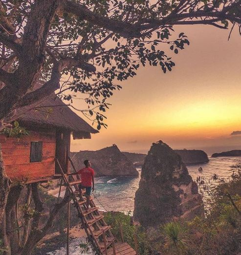 Rumah Pohon (Tree House) Nusa Penida