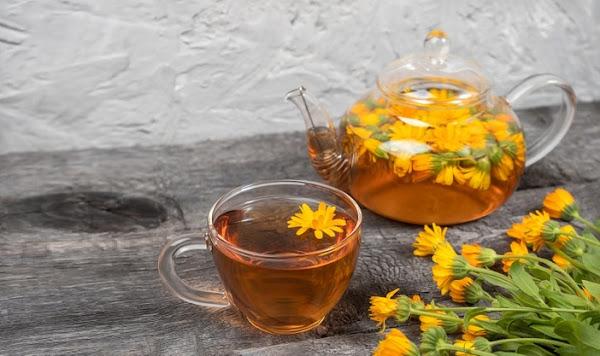 فوائد وخصائص شاي الأقحوان